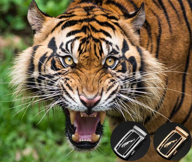 Lựa chọn thắt lưng mặt hổ