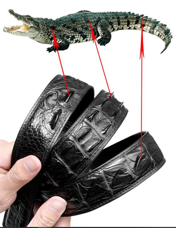 Phân biệt thắt lưng da cá sấu liền và dây nối